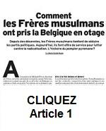 FM Belgique 0-1 Petit
