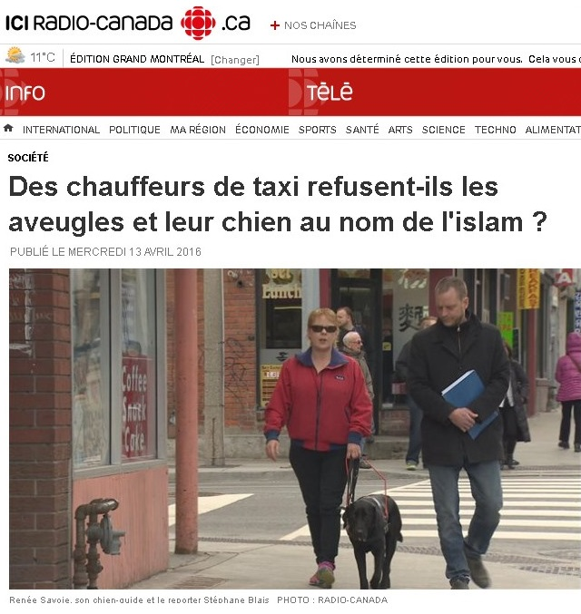 Chien-guide